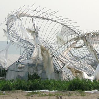 ビニールハウスの台風・強風対策|作物を守る環境制御システムとは?