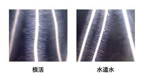 根活&ナノバブル水製造装置イメージ