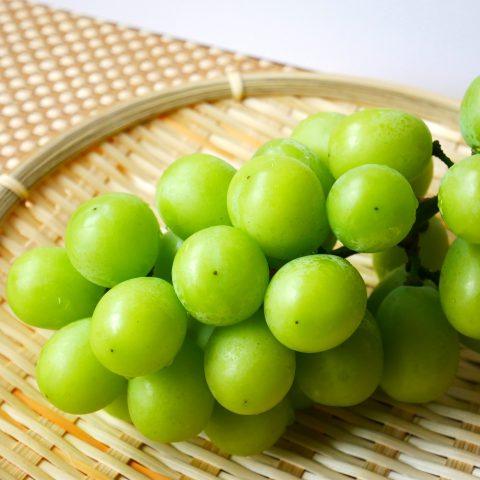 味や実成りが違う 勝沼のブドウ農家も絶賛