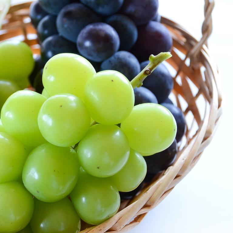 ブドウ生産の収入が20%アップ