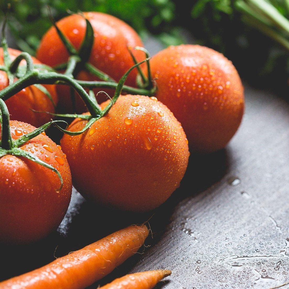 冬のハウス栽培に適した野菜とは?環境をコントロールして収入アップ