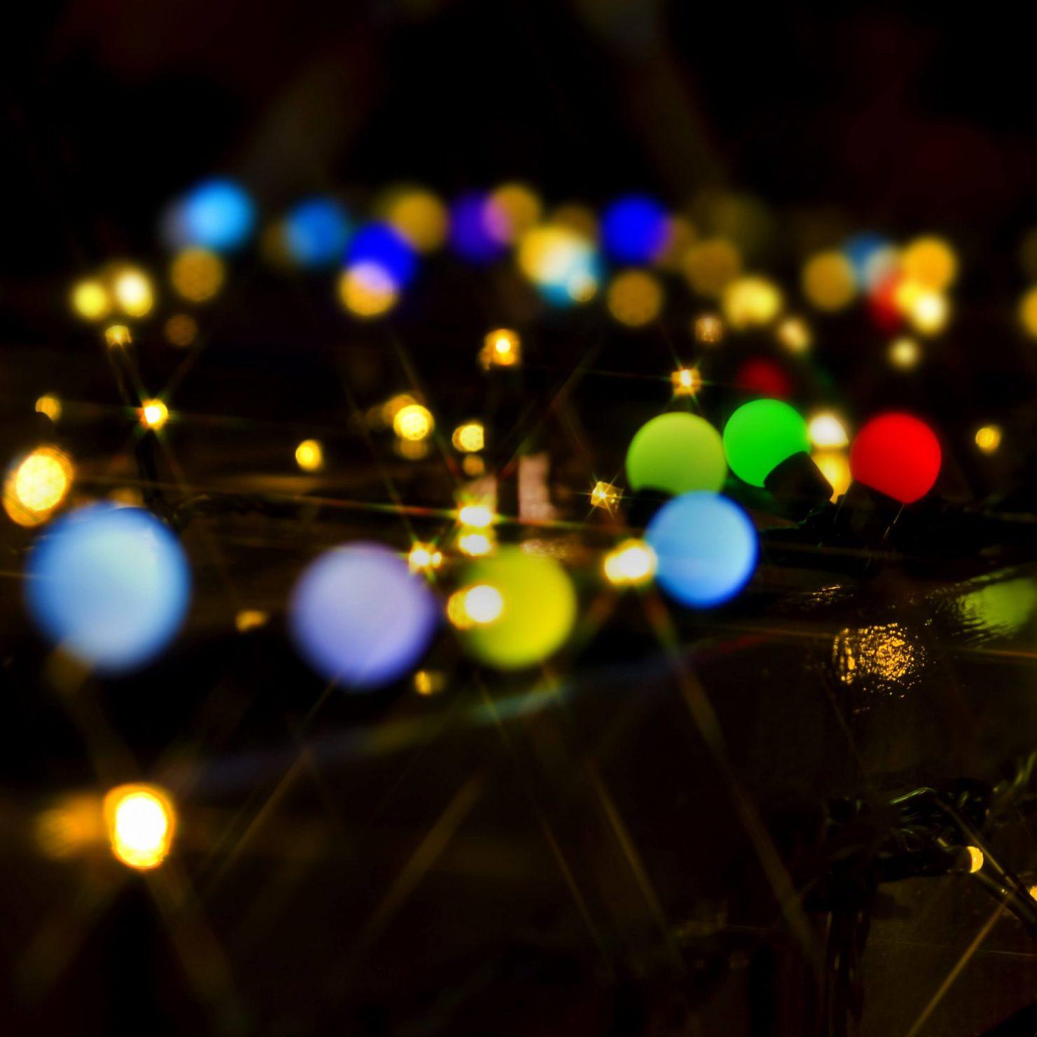 LEDで虫除けが出来る?|昆虫と光の不思議な関係