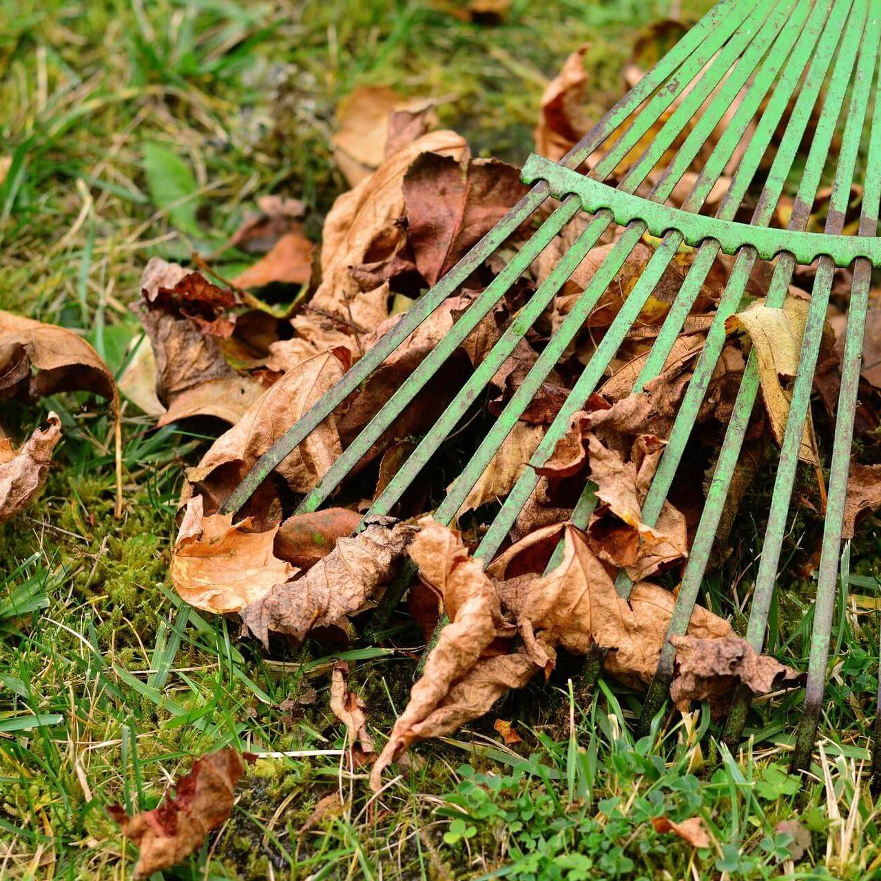 落ち葉ブロワーの使い方|効率の良い清掃を目指して