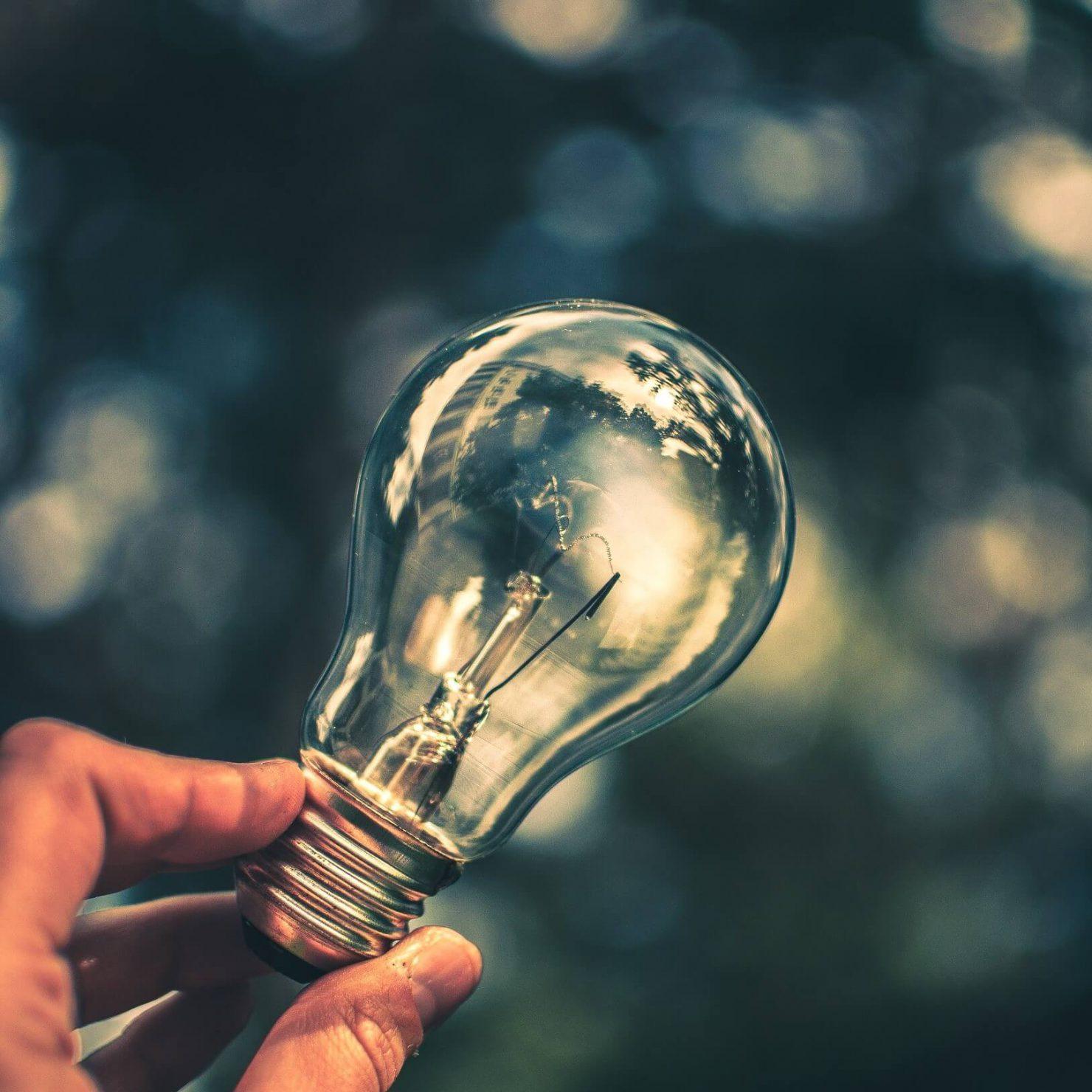 LED照明を活用した室内栽培