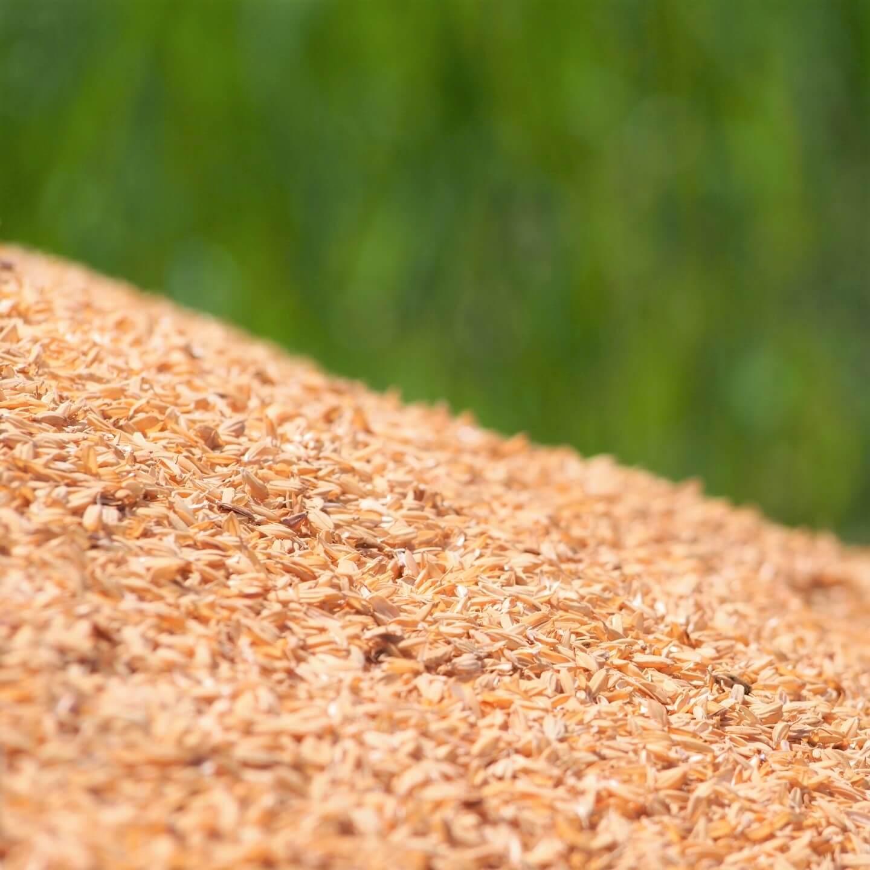 籾殻を使った土壌改良|見直される自給肥料