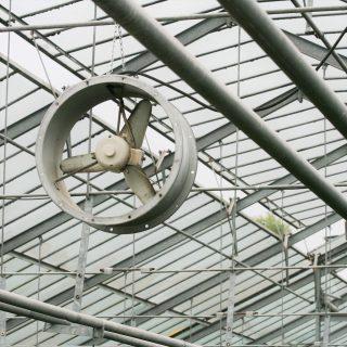 ビニールハウスの遮光・遮熱資材の効果と活用術