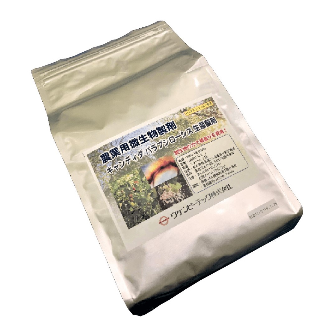 キャンディダパラプシローシス生菌製剤(イメージ)